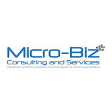 Micro-Biz Consulting and Services